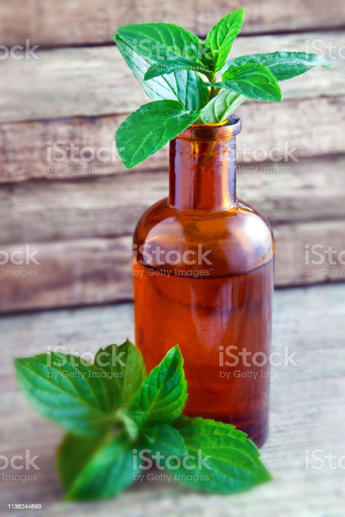 Peppermint Oil Herbal Medicine Stock Photo - Download Image Now - iStock