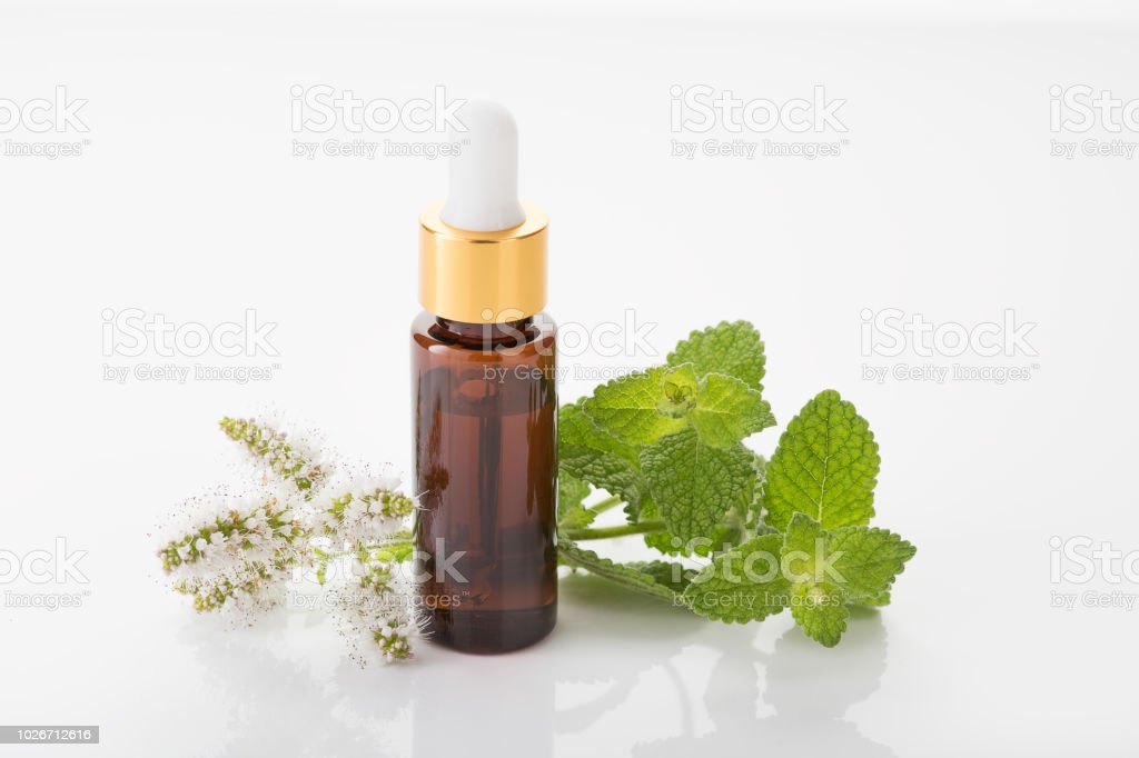 Peppermint oil isolated white background stock photo