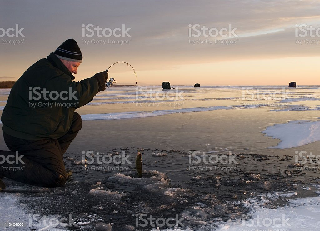 Perch Fishing Sunset stock photo