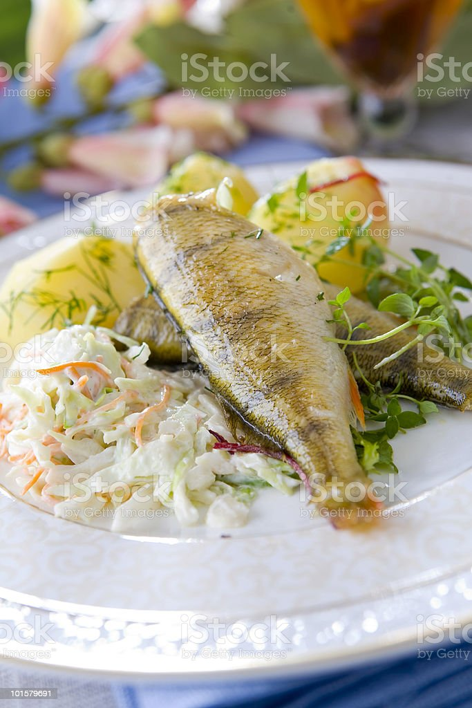 perch grilled royalty-free stock photo