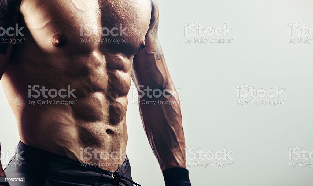 Perfeito músculos abdominais foto de stock royalty-free