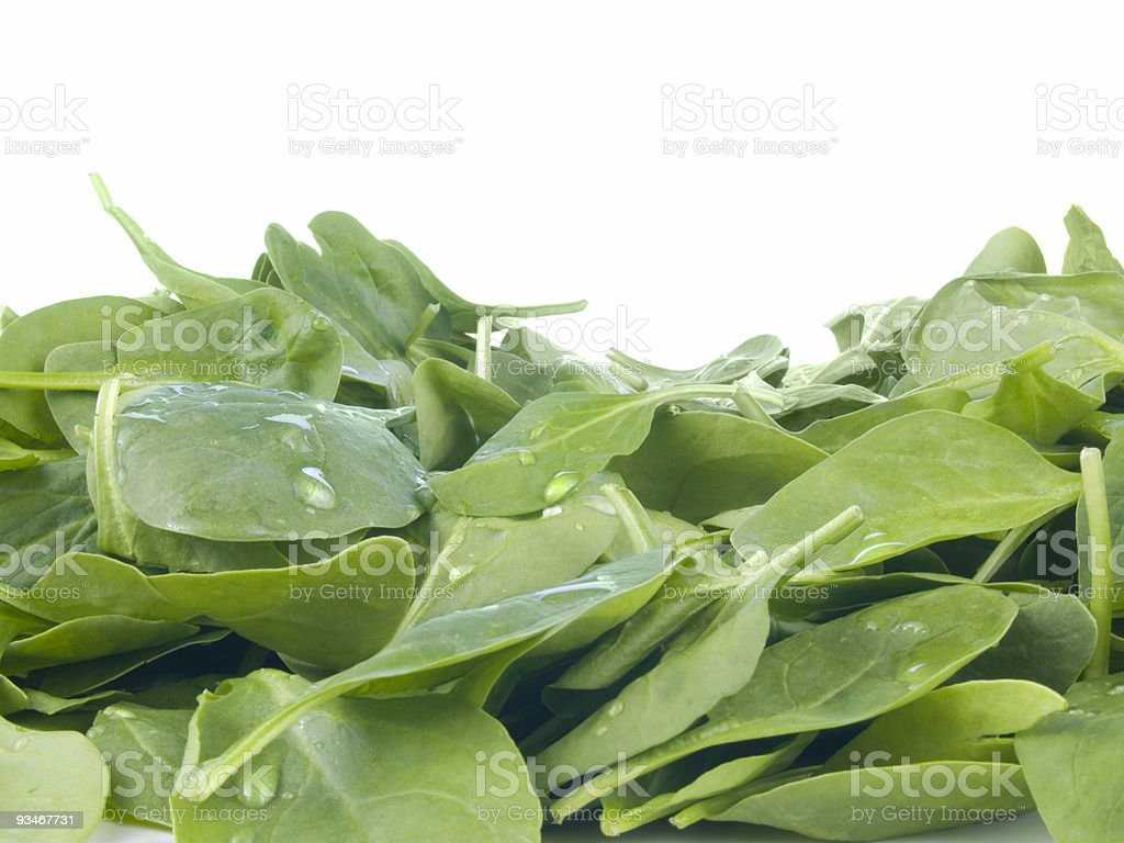 Perfect baby spinach greens royalty-free stock photo