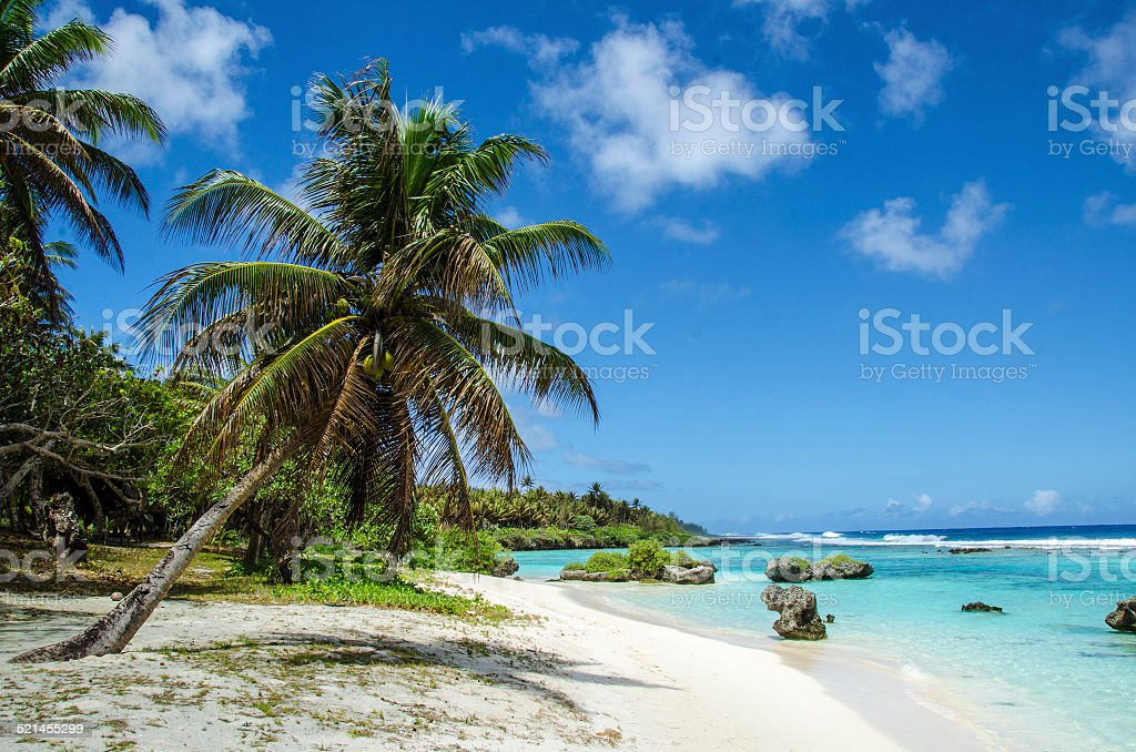 Perfect Beach stock photo