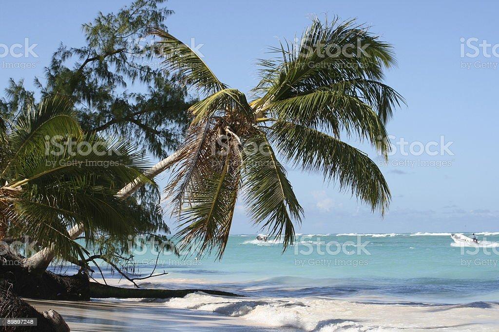 Perfect Beach royalty-free stock photo