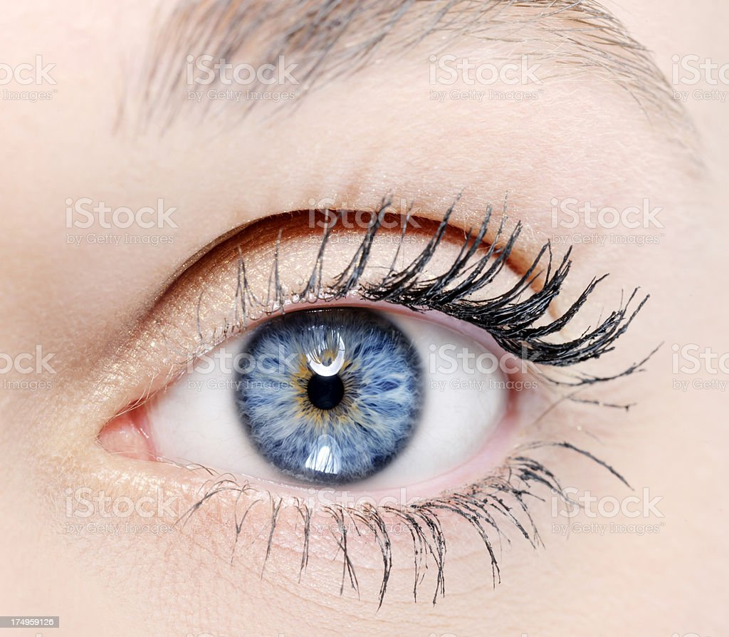 perfect blue eye royalty-free stock photo