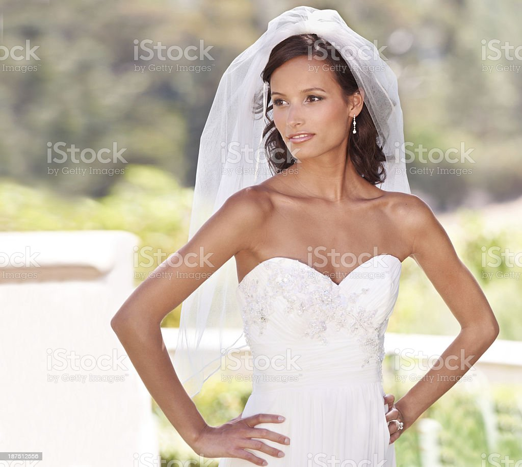 Perfect bridal pose stock photo