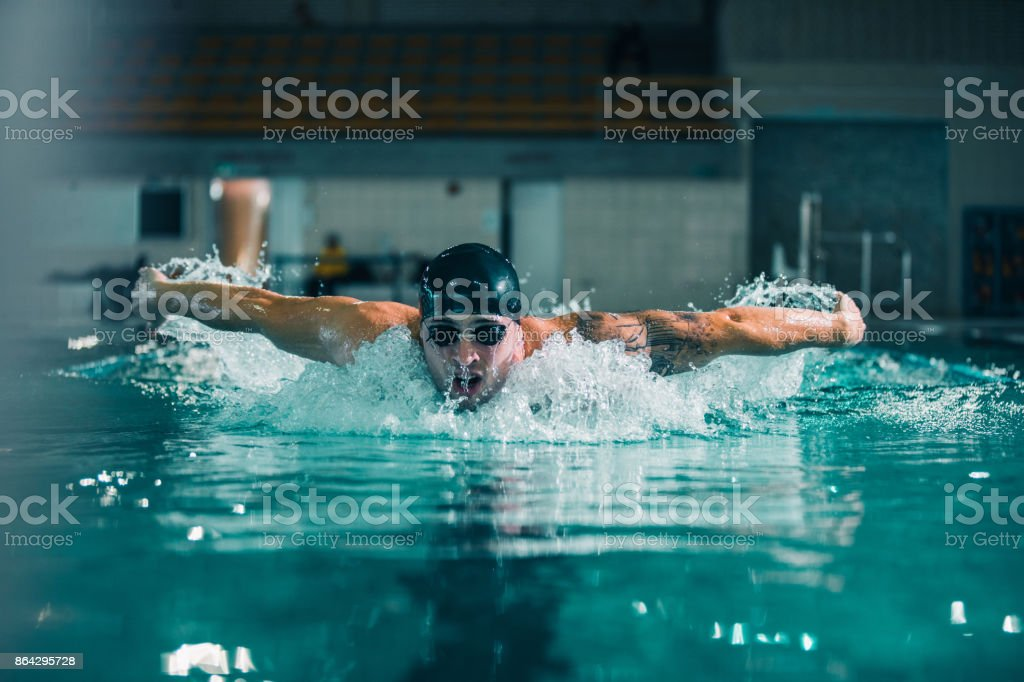 Perfect butterfly stroke royalty-free stock photo