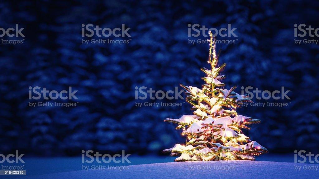 Perfect Christmas stock photo
