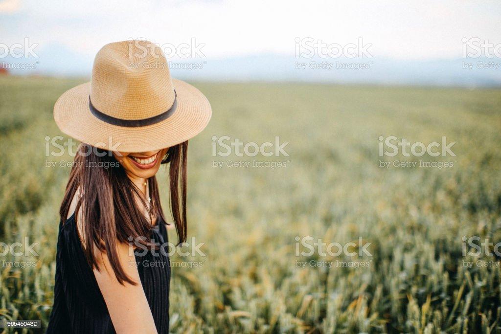 Perfect day in beautiful wheat field zbiór zdjęć royalty-free