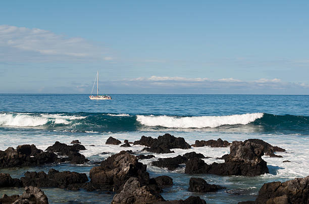 Perfect Day To Be On The Ocean  neicebird stock pictures, royalty-free photos & images