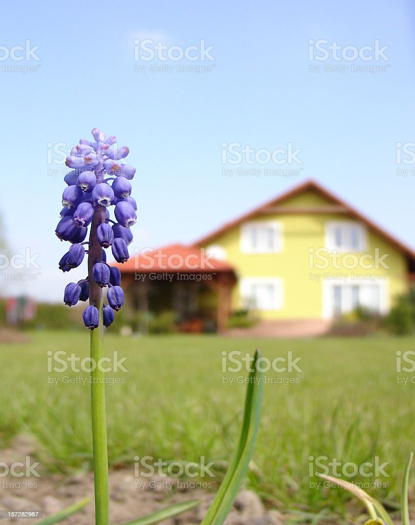 Perfect family house! royalty-free stock photo