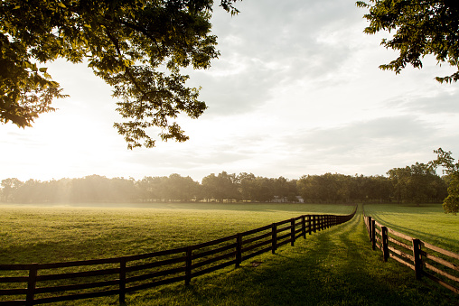 Landscape in Kentucky. Horizontal image showing the Kentucky farm land. Wooden fences proceed into the distance. Sun casts a warm hue across the field.