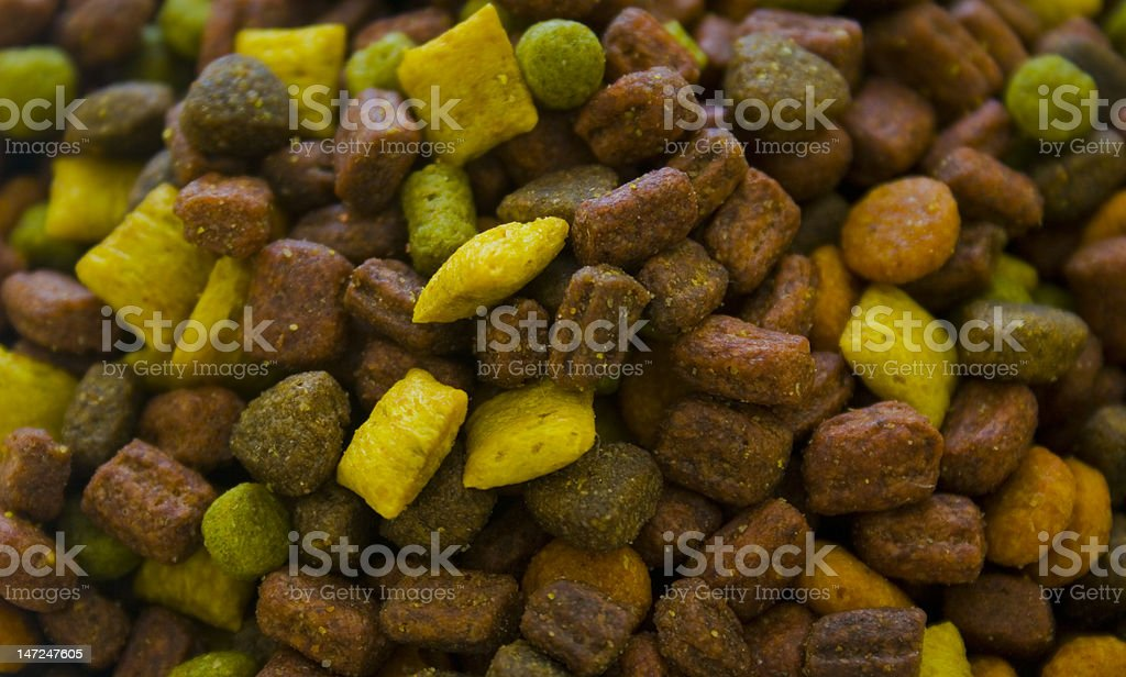 Perfect Food For The Cats stock photo