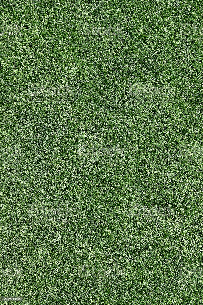 Perfect grass royalty-free stock photo