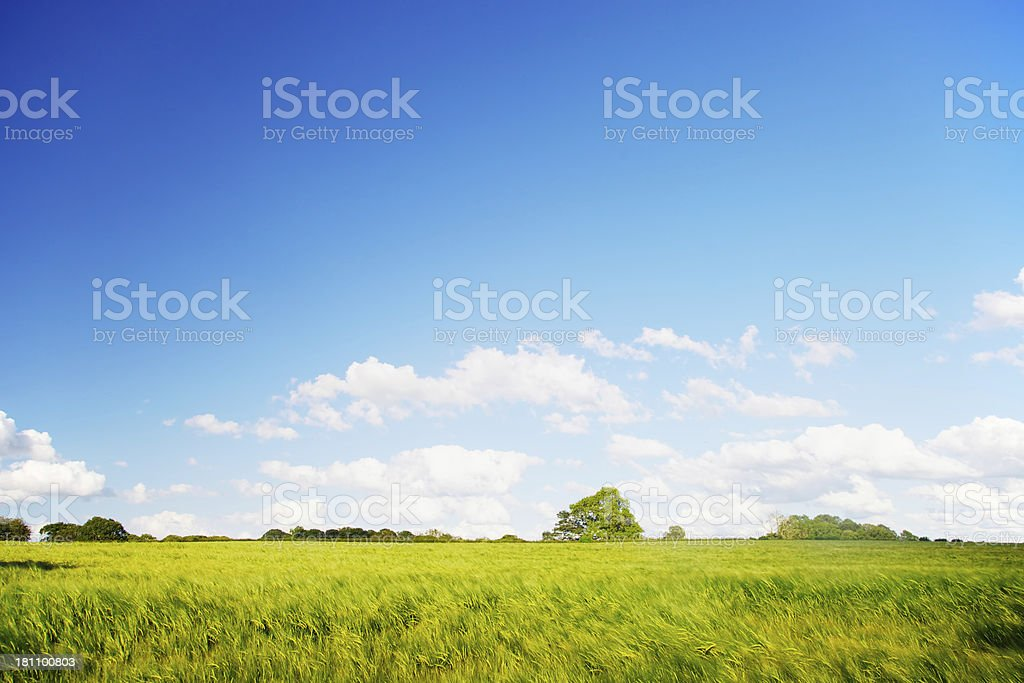 Perfect landscape royalty-free stock photo