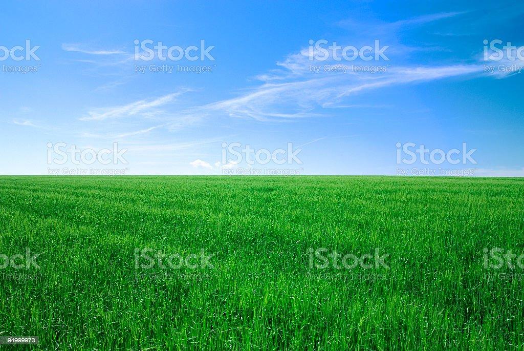 Perfekte Landschaft – Foto