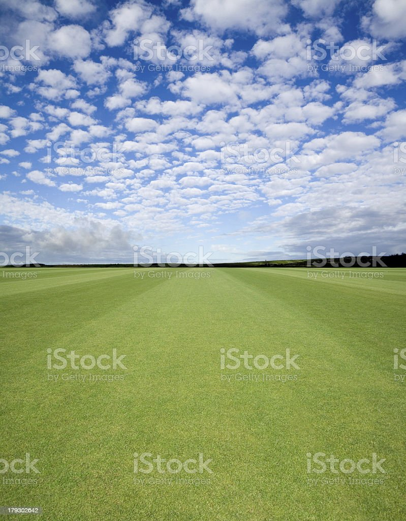 Perfect Lawn stock photo
