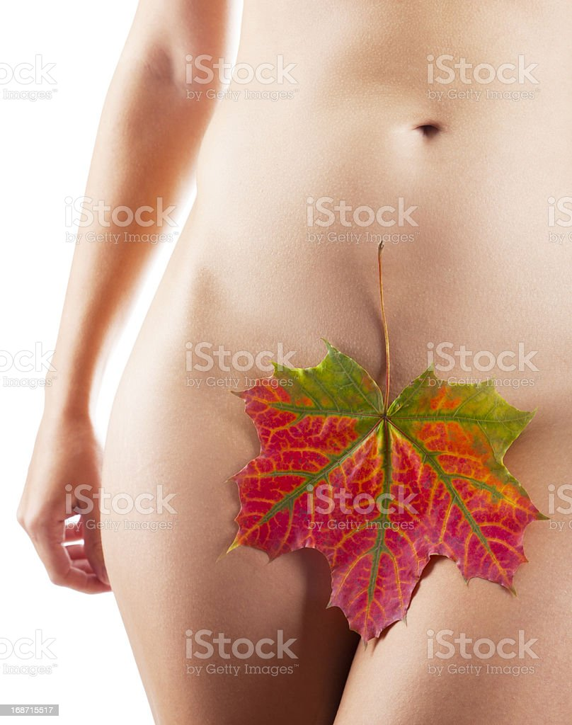 Perfect nude girl torso with maple leaf royalty-free stock photo