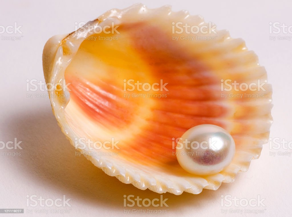 Perfect Pearl royalty-free stock photo