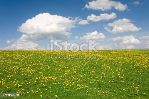 perfect sky with simple meadow in bavaia