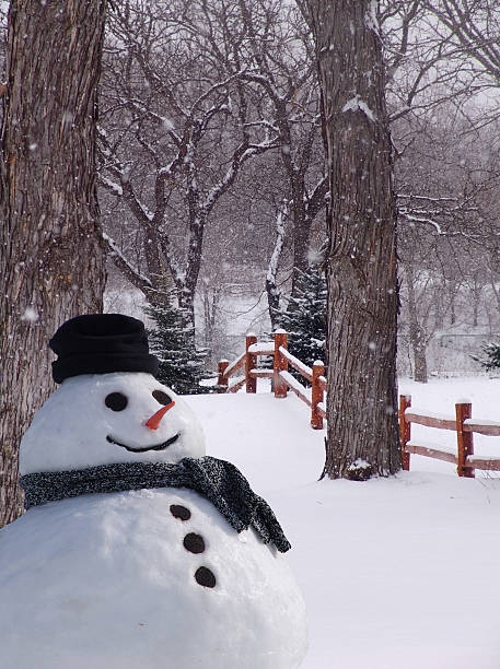 Perfect Snowfall and Snowman stock photo