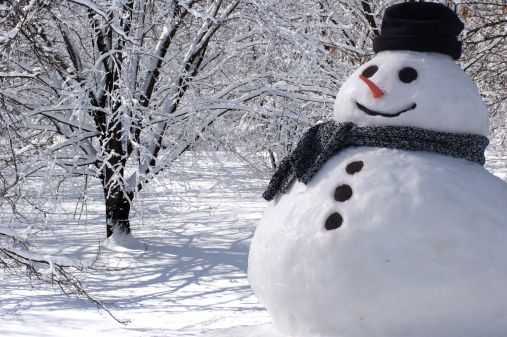 Perfect Snowman at Home
