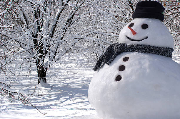 Perfect Snowman at Home stock photo
