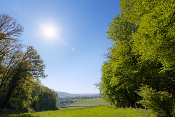 Perfect spring day landscape stock photo