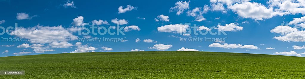 Perfect summer landscape background green field hill blue sky panorama stock photo