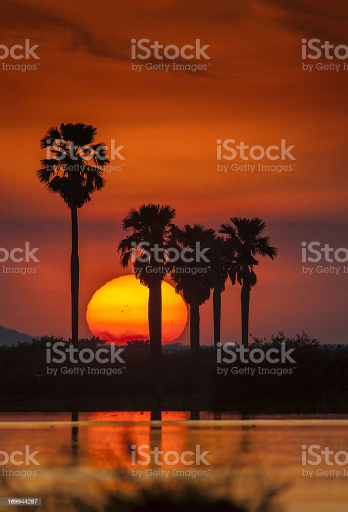 Perfect sunset after a Safari-day in East Africa royalty-free stock photo