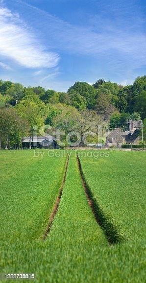 istock Perfect symmetry of 2 tractor tracks converging towards the horizon cutting through early green wheat fields below a blue sky. 1222738815