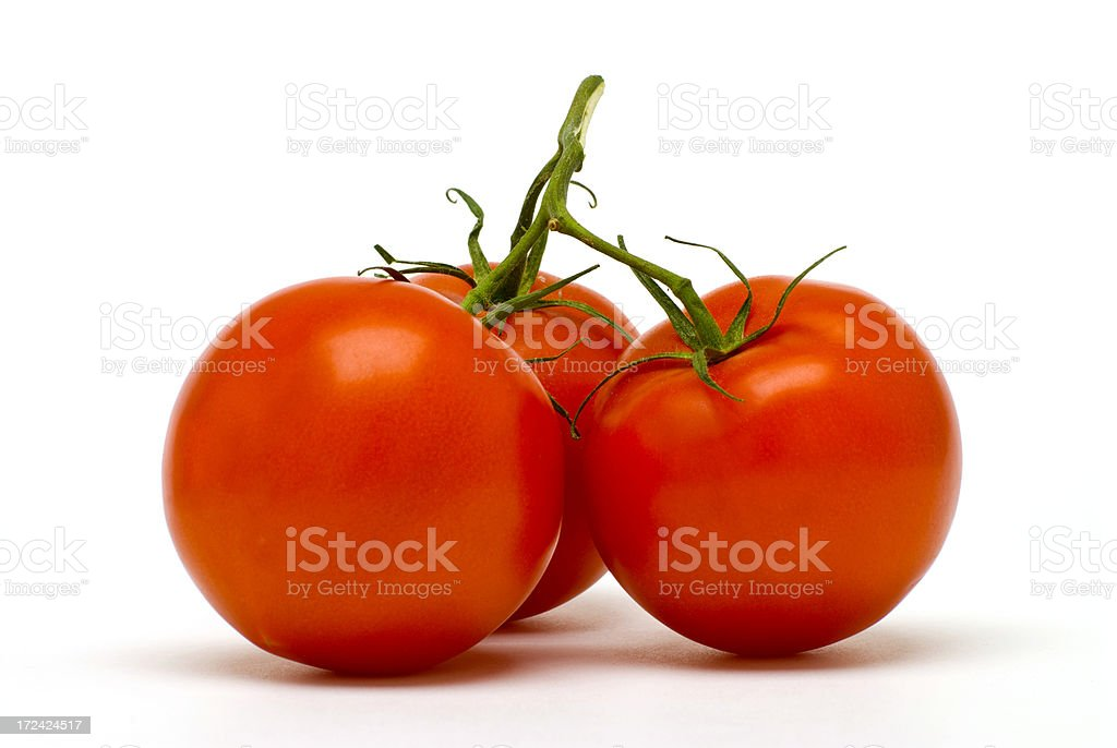 Perfect Tomatoes royalty-free stock photo