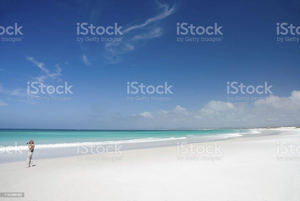 Perfect white sand beach, turquoise water, blue sky, Tasmania stock photo