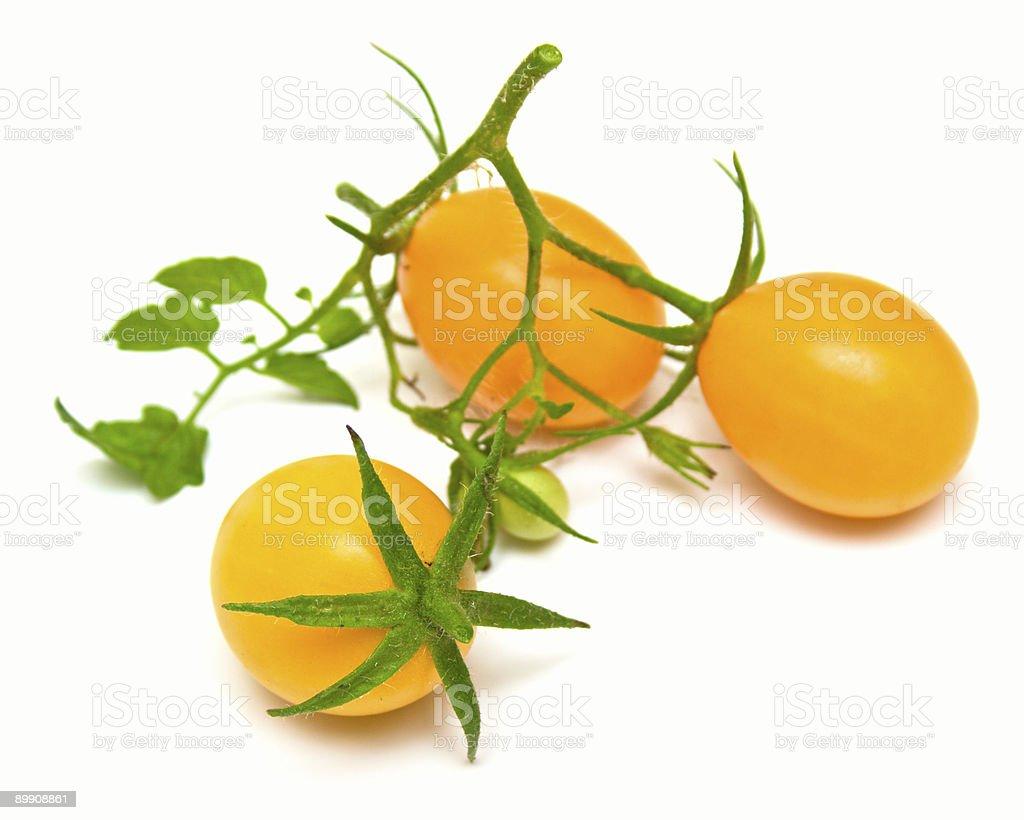 perfect yellow tomatoes royalty-free stock photo
