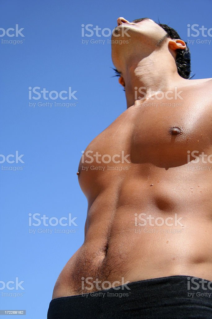 Perfection royalty-free stock photo