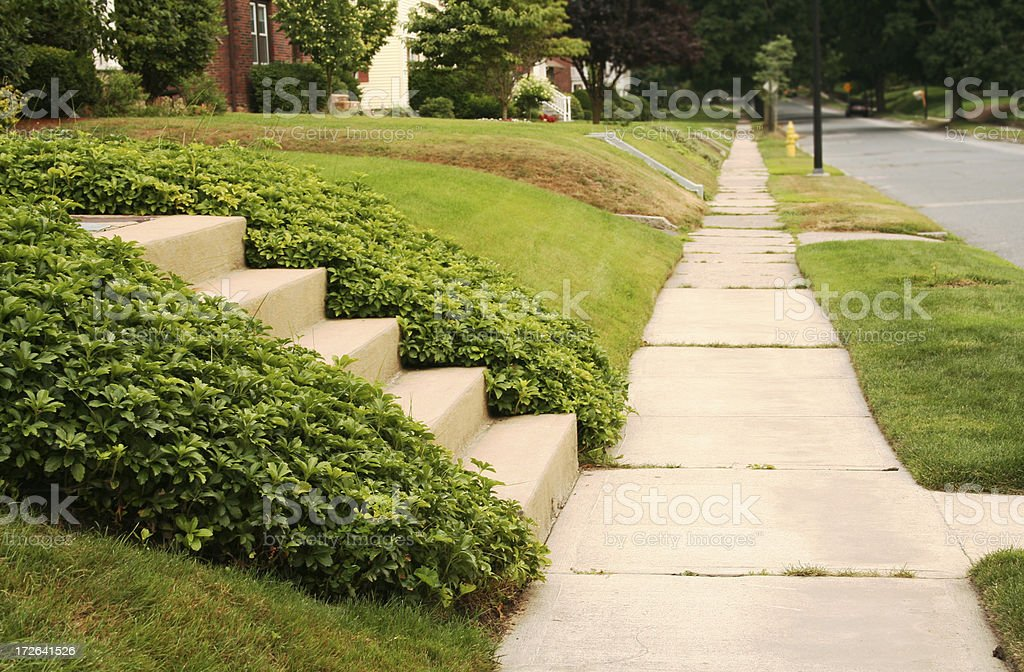 Perfectly Manicured Suburb royalty-free stock photo