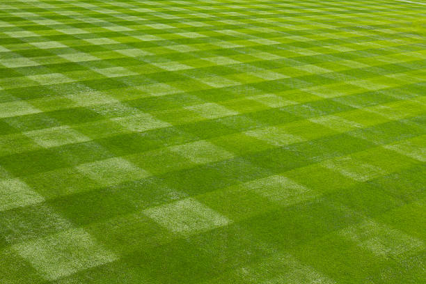 Perfectly mown grass at the ball field.  baseball diamond stock pictures, royalty-free photos & images