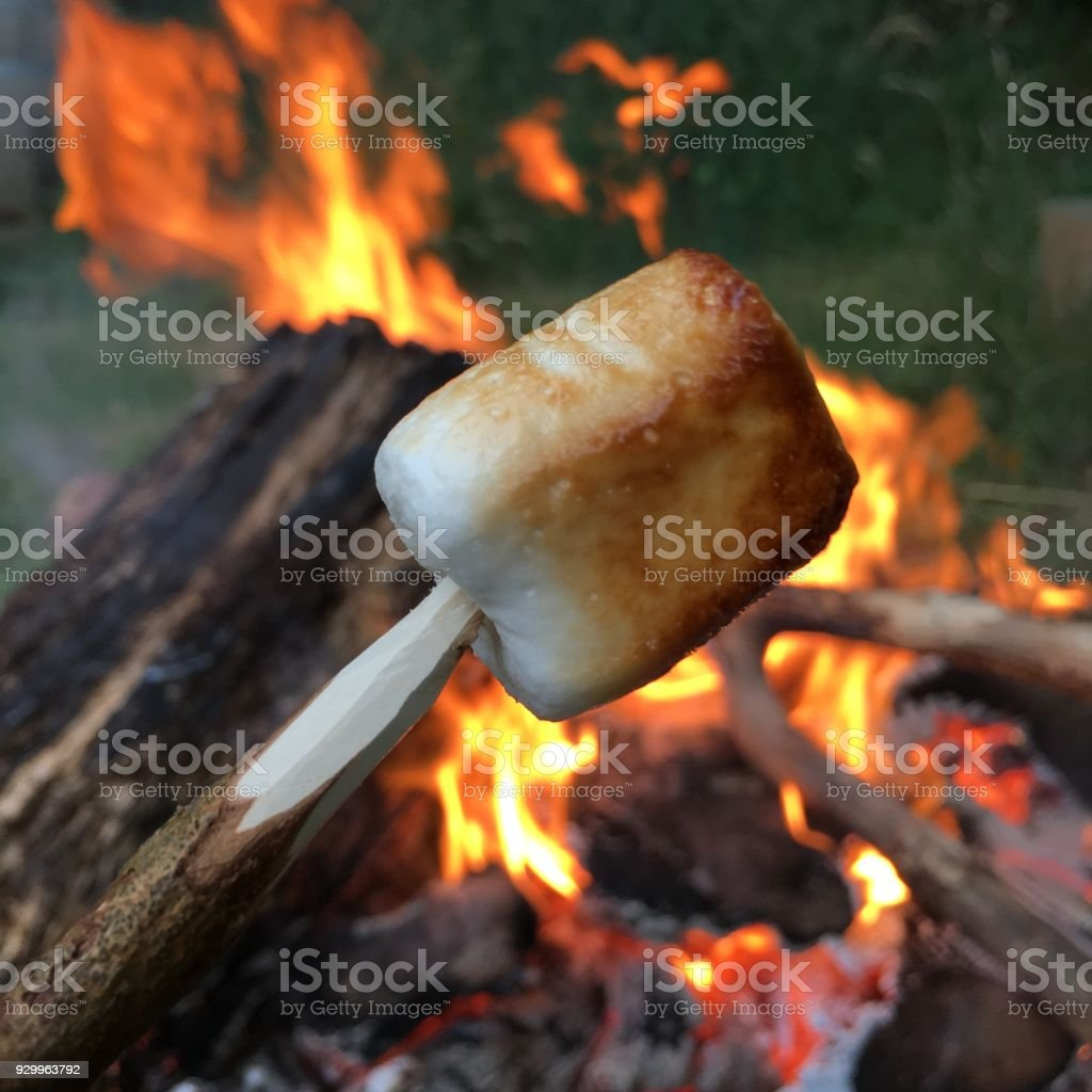 Perfectly roasted Marshmallow on a stick stock photo