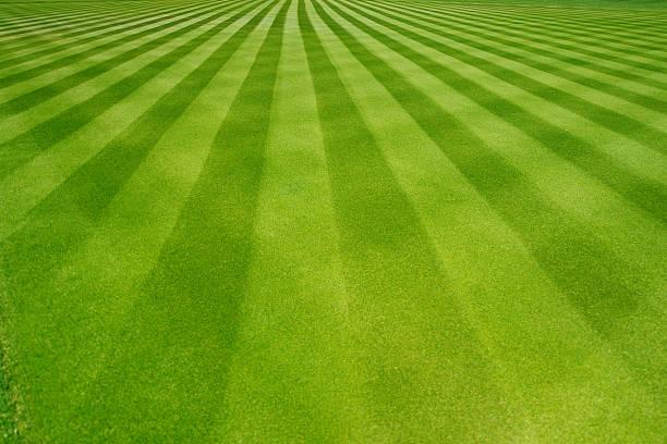 Perfectly striped freshly mowed garden lawn picture id514570230?b=1&k=6&m=514570230&s=612x612&w=0&h=fz0ur3xeu woijswvexgzzmopj0gegri2cpmmluv7va=