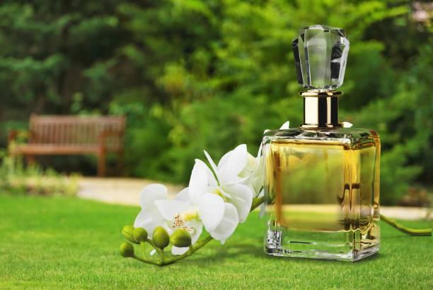 parfüm. - modedetails stock-fotos und bilder