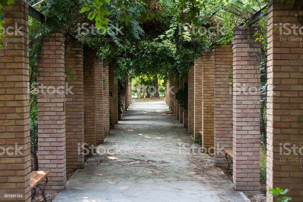 Pergola in Athens park, the National Garden Greece photo stock photo