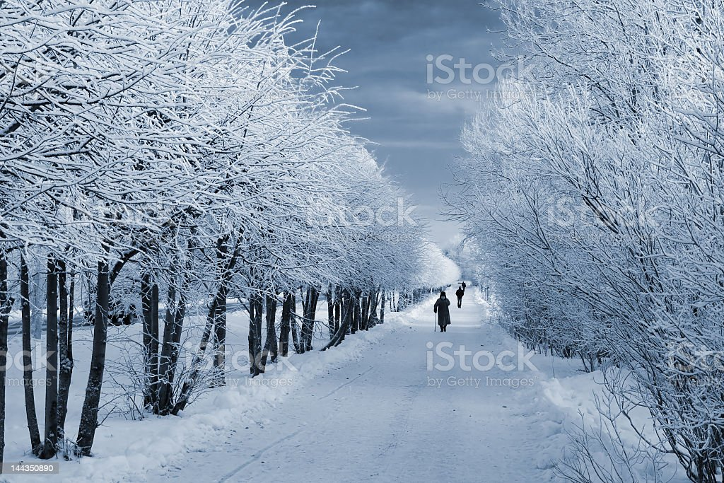Permafrost winter land in twilight stock photo