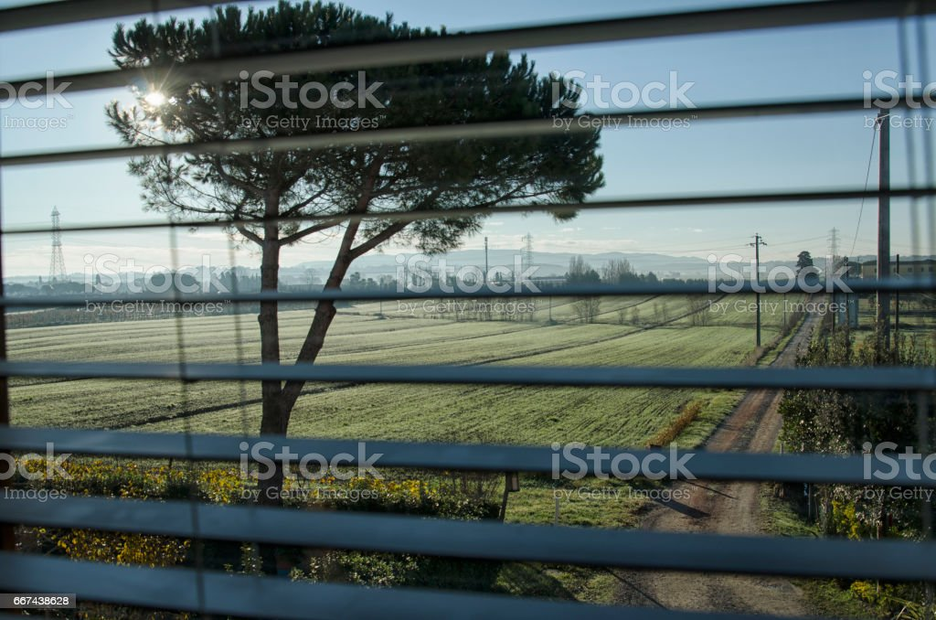 persian blind and sunbeam stock photo more pictures of blinds istock