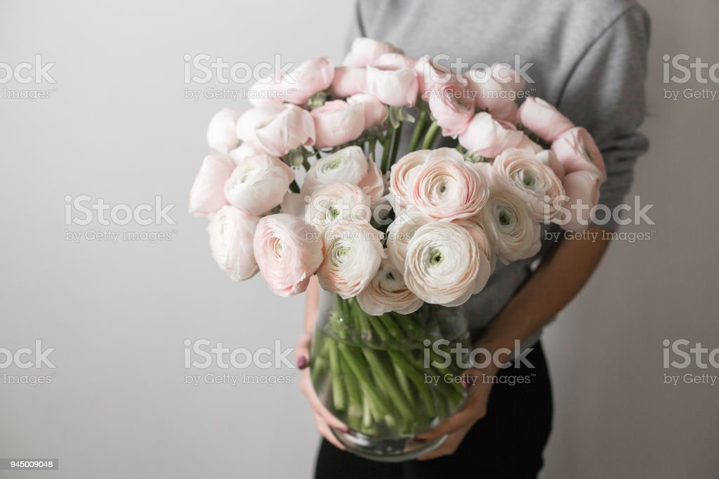 Persian Buttercup Bunch Pale Pink Ranunculus Flowers In A Vase In