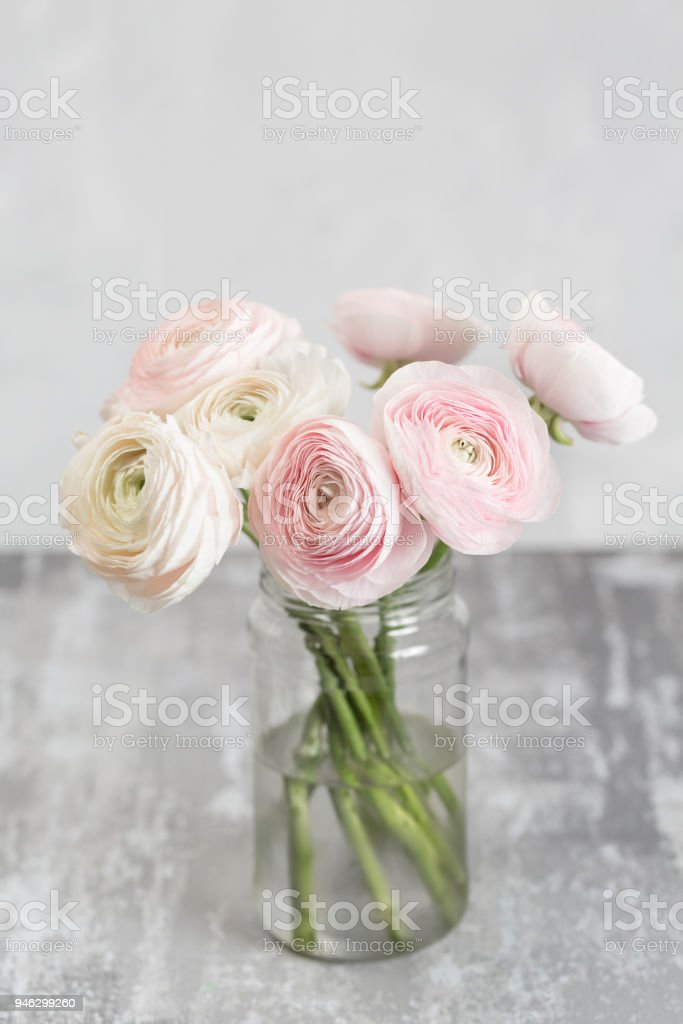 Bouton Dor Persan Dans Les Vases En Verre Botte De Renoncules Rose