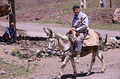 May 2019, Alamut castle, Alborz mountains, Iran. Persian man riding his donkey on the way to his village