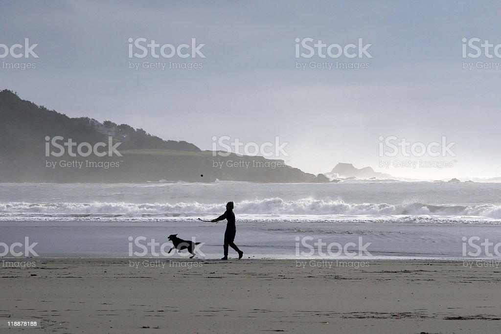 Person and dog on beach royalty-free stock photo