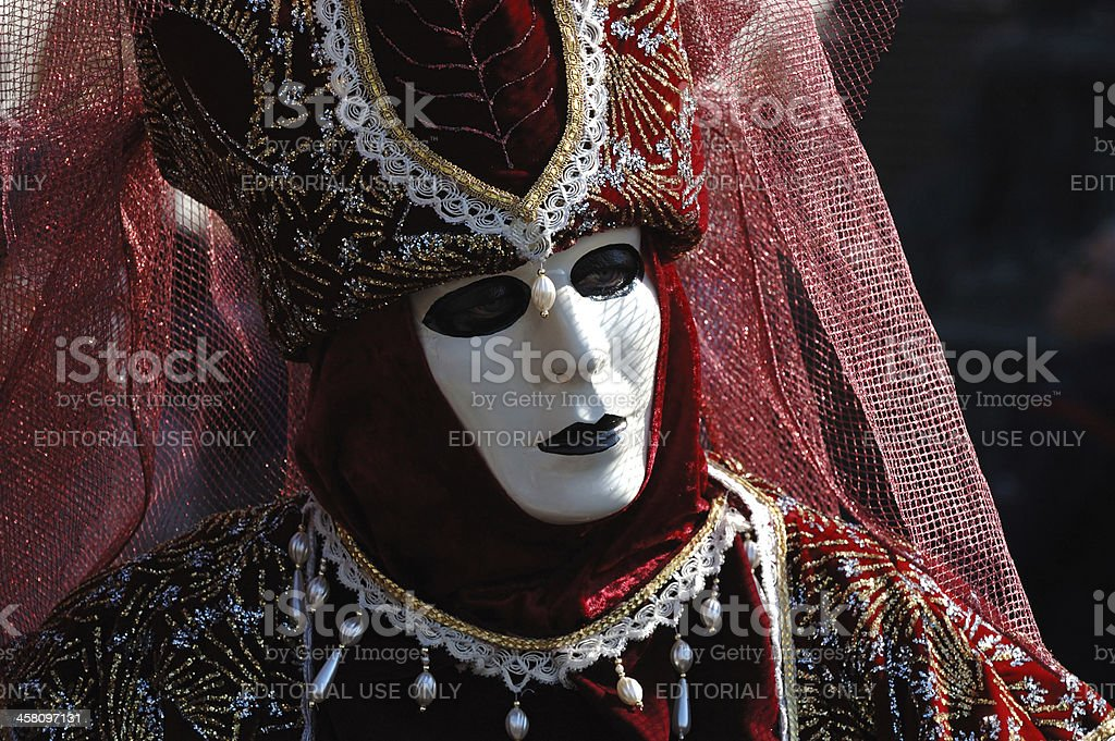 Person at Venice carnival,2011 royalty-free stock photo