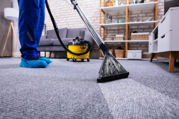 9,185 Carpet Cleaning Stock Photos, Pictures & Royalty-Free Images - iStock