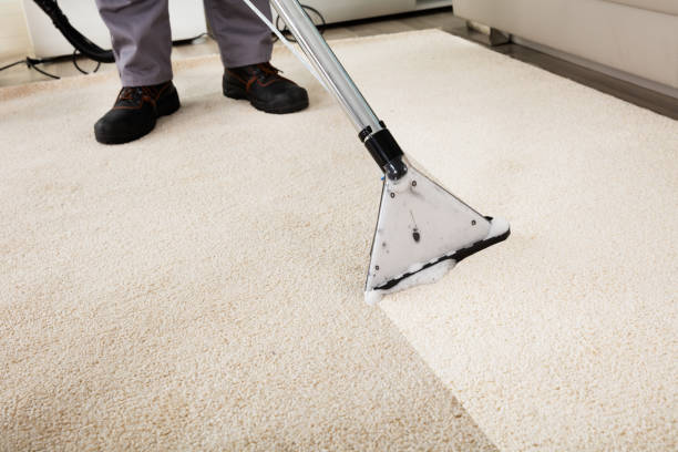 Person cleaning carpet with vacuum cleaner picture id832990938?b=1&k=6&m=832990938&s=612x612&w=0&h=qra u udeya4ls4ozse0js7qkvzadok3hbyr6beyova=